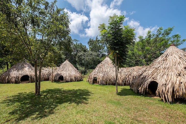 Banyan Camp