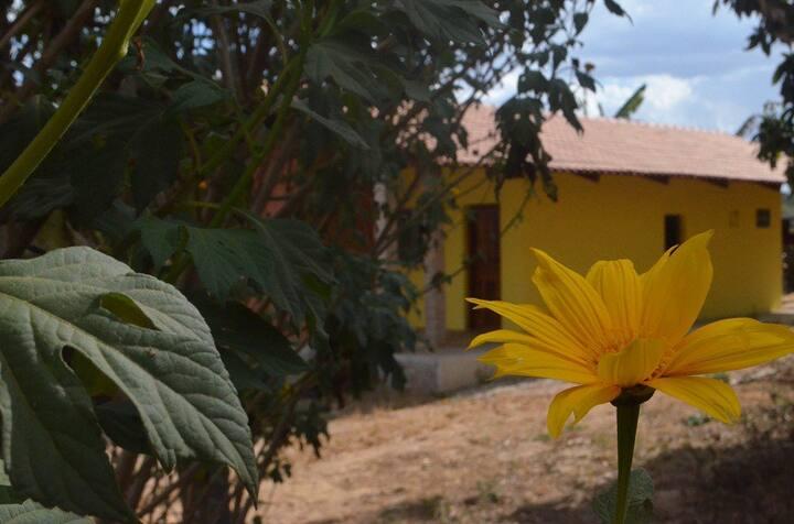 HOUSE IN QUIET NATURE