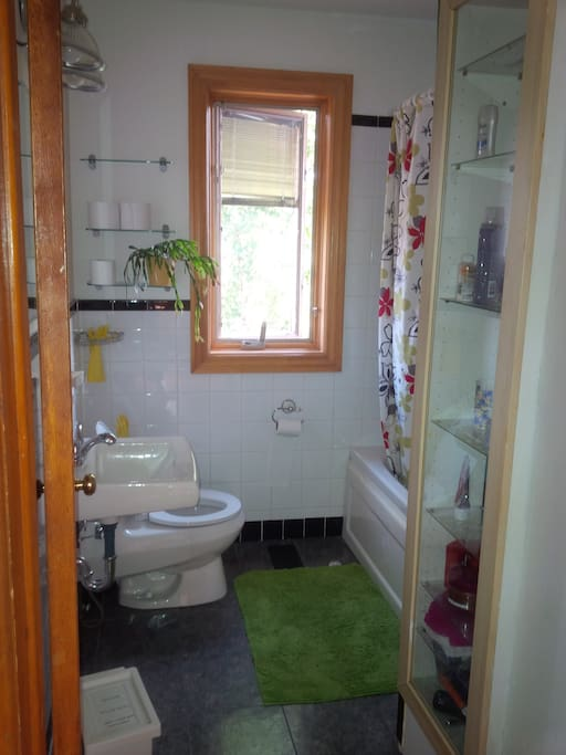 Second floor shared by visitors bathroom.