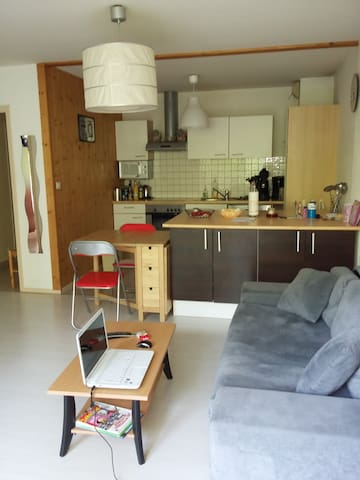 calme appart - Rumilly - Apartment