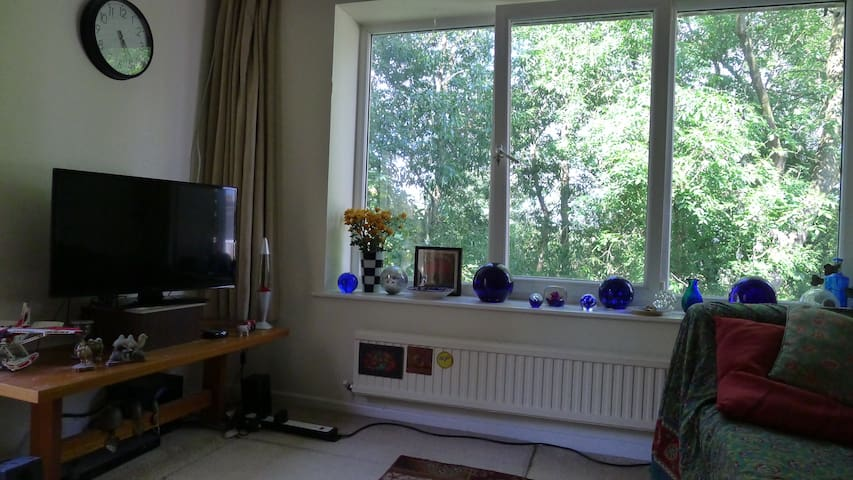 Quiet Oxford parkside flat near city centre - Oksford - Apartament