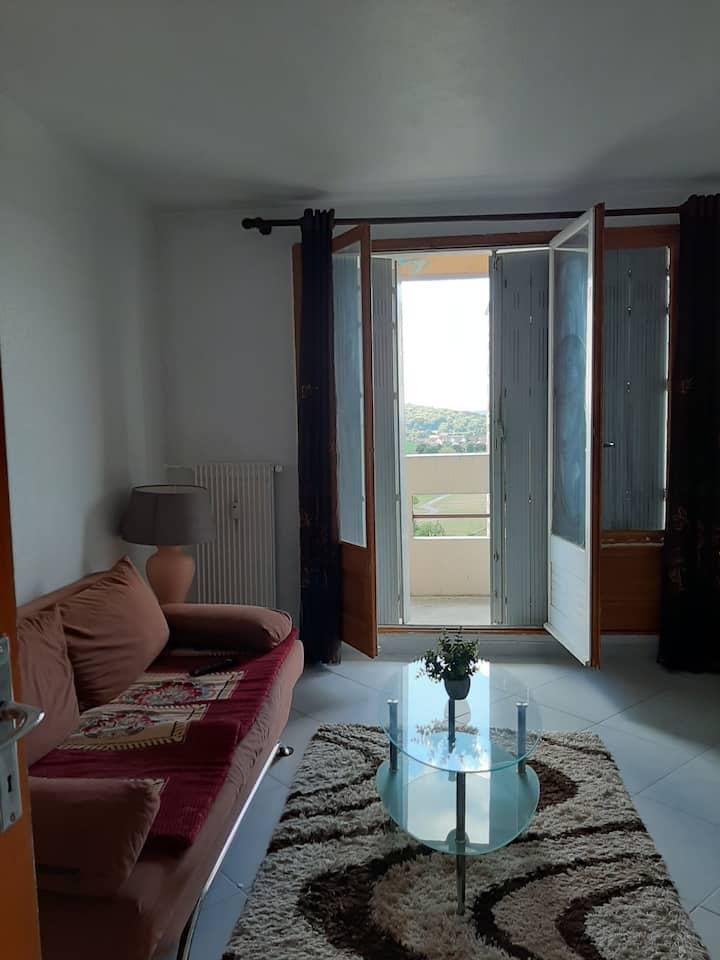 Appartement lumineux Belfort