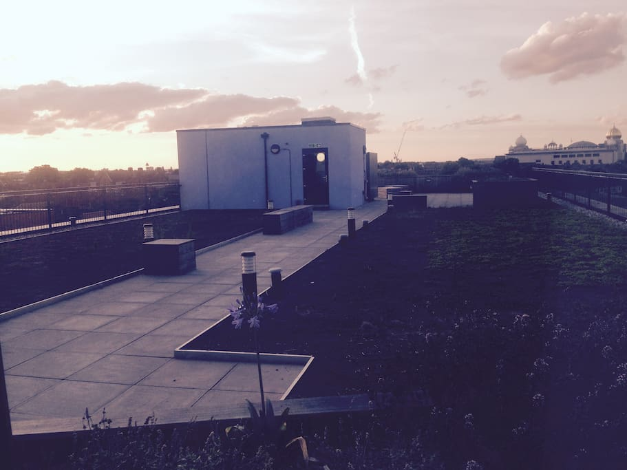 Shared rooftop for the sunset every evening