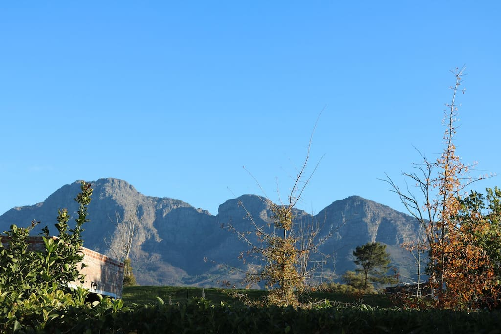 View of the Simonsberg mountains from the cottage