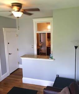 Amazing sunny one bedroom condo in Beacon Hill - Boston - Apartment