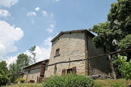 Villa Cristina - Borgo San Lorenzo - Villa