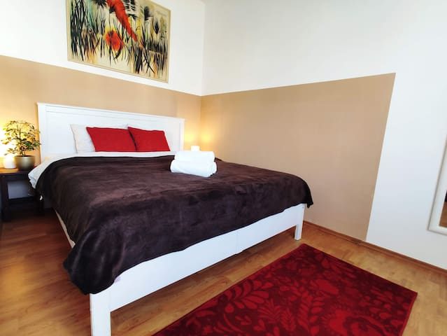 Spacious Room In Very Central Old Town Apartment