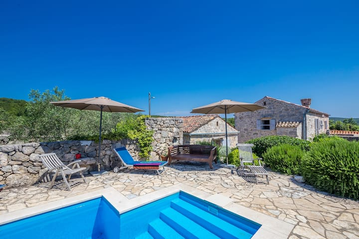 Rustic house for ten people with pool (12901) - Bajčići - Maison