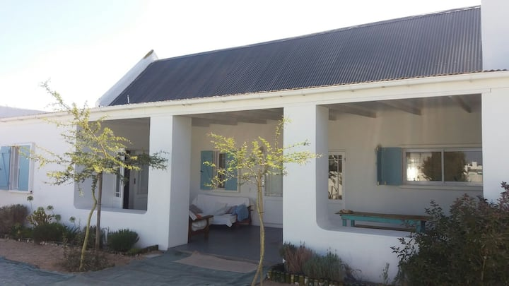 Olive Branch Holiday Home