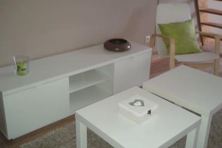 Apartment with 2 studio's ; Tomorrowland 5,5 km - Niel - Huoneisto