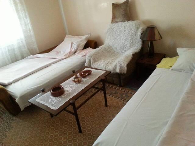 Guča accommodation