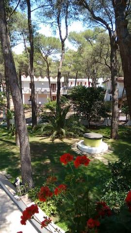 Villa immersa nel verde - Castellaneta Marina - Квартира