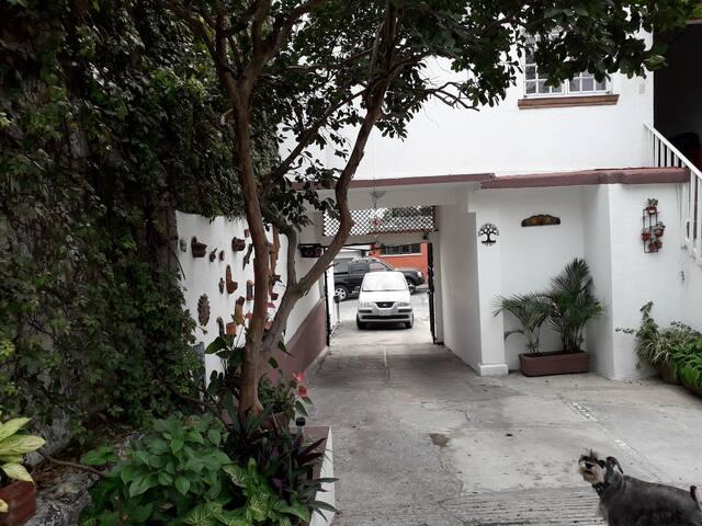 El departamento cuenta con lugar de estacionamiento para un auto dentro de la propiedad