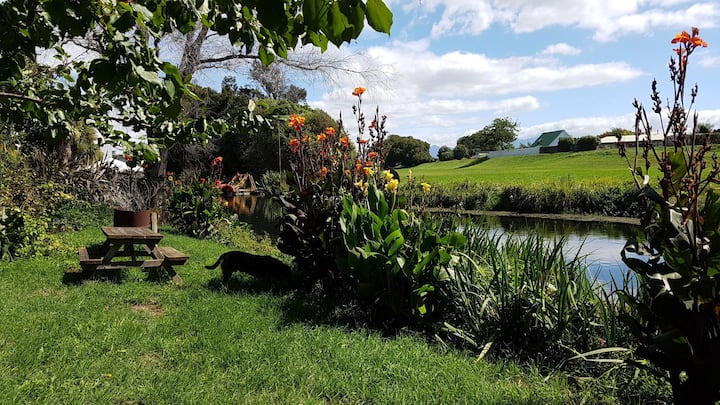 Orange tree Cottage on the Opawa river.