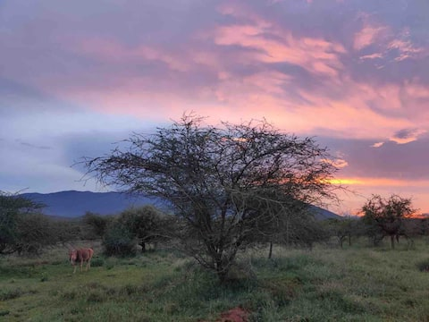 Nature lovers Ol donyo Orok glamping eco camp