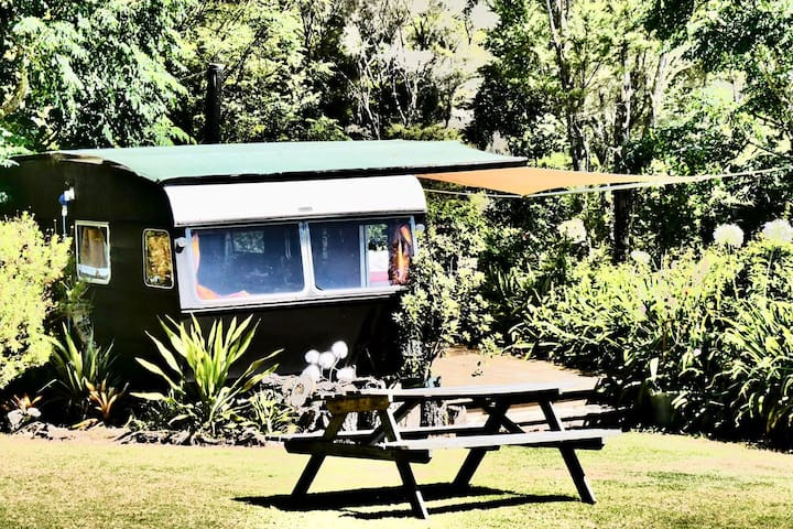Glamping - The Silver Ferns Classic Caravan