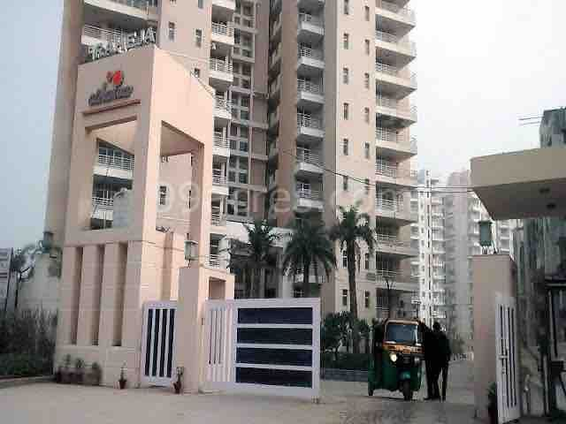 Studio flat; dream city Gurgaon, couple friendly