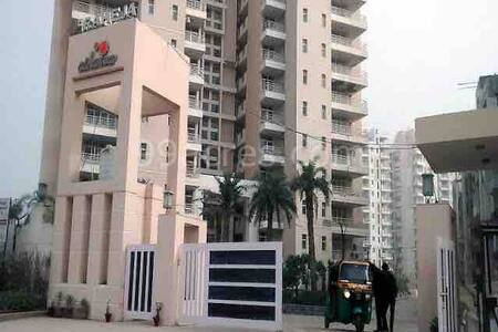 Sweet home:Studio flat in Gurgaon, couple friendly