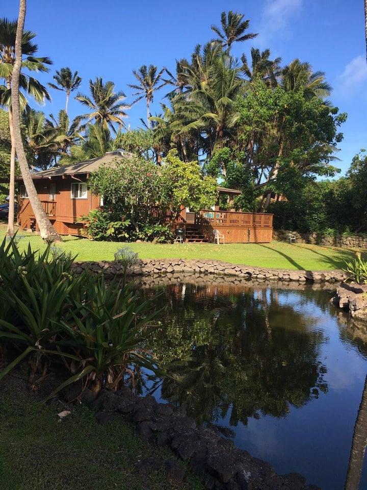 """Mushroom House"" Kualoa Mountain & Beach Rental!"