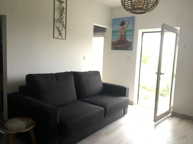 Un canapé Convertible dans le petit salon