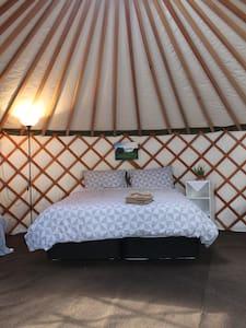 Waitahanui Yurt Experience