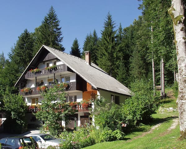 Apartments & room Destina Bohinj 4