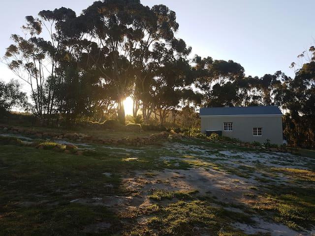 Kolgaans cottage - Napier