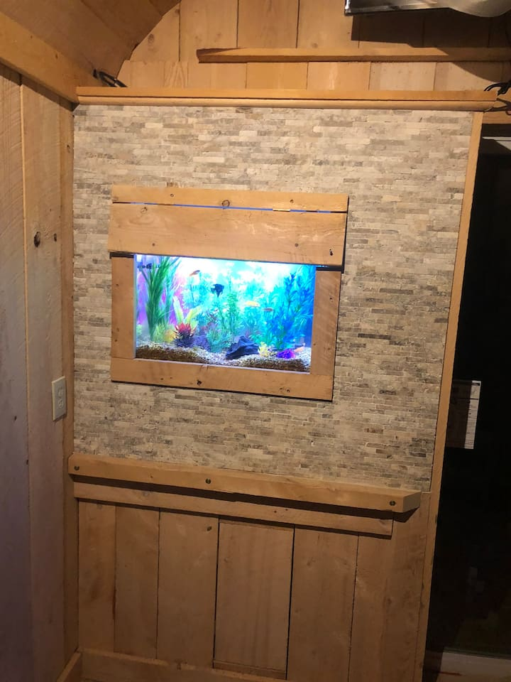 """Aquarium Built into the wall  You have to come to see our. """"Picture Frame Fish Tank"""".   People love it.   One of a kind"""