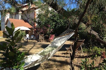Petite villa Cerbère - Lacanau