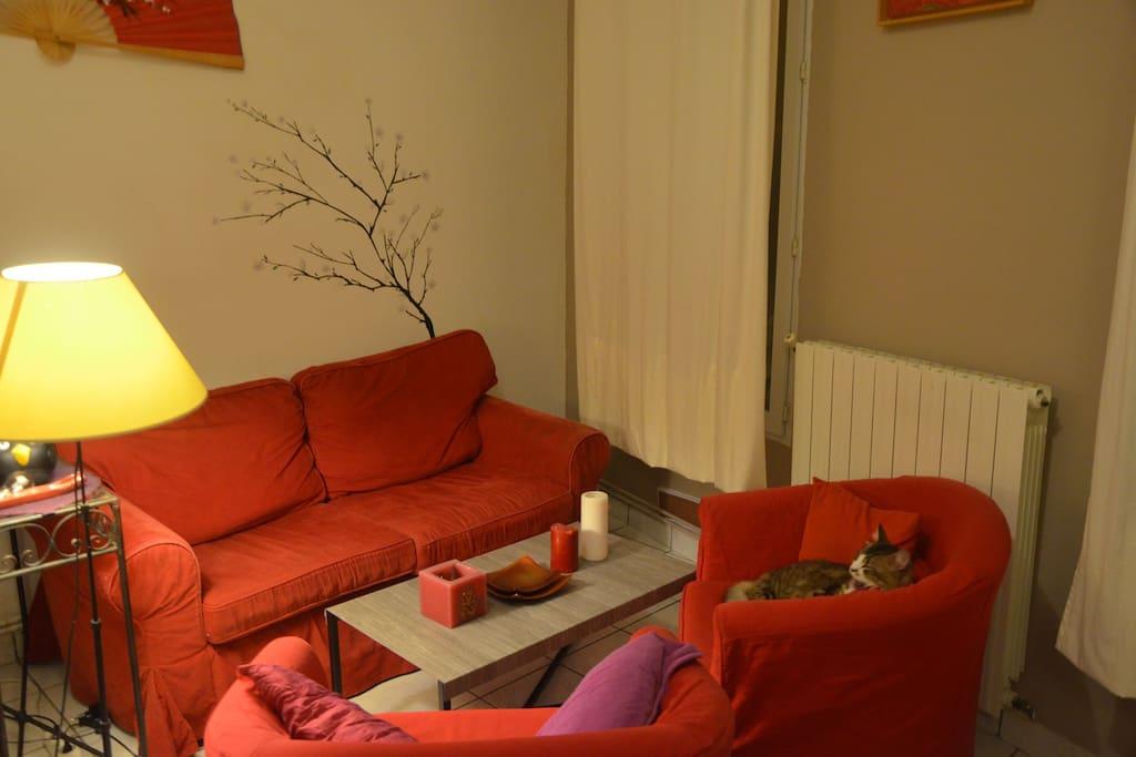 Salon / Lounge + Max le chat