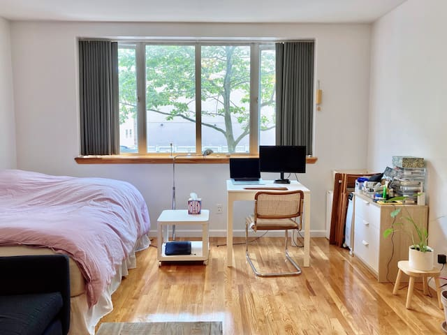 Spacious & Sunny Studio in Beautiful Neighborhood