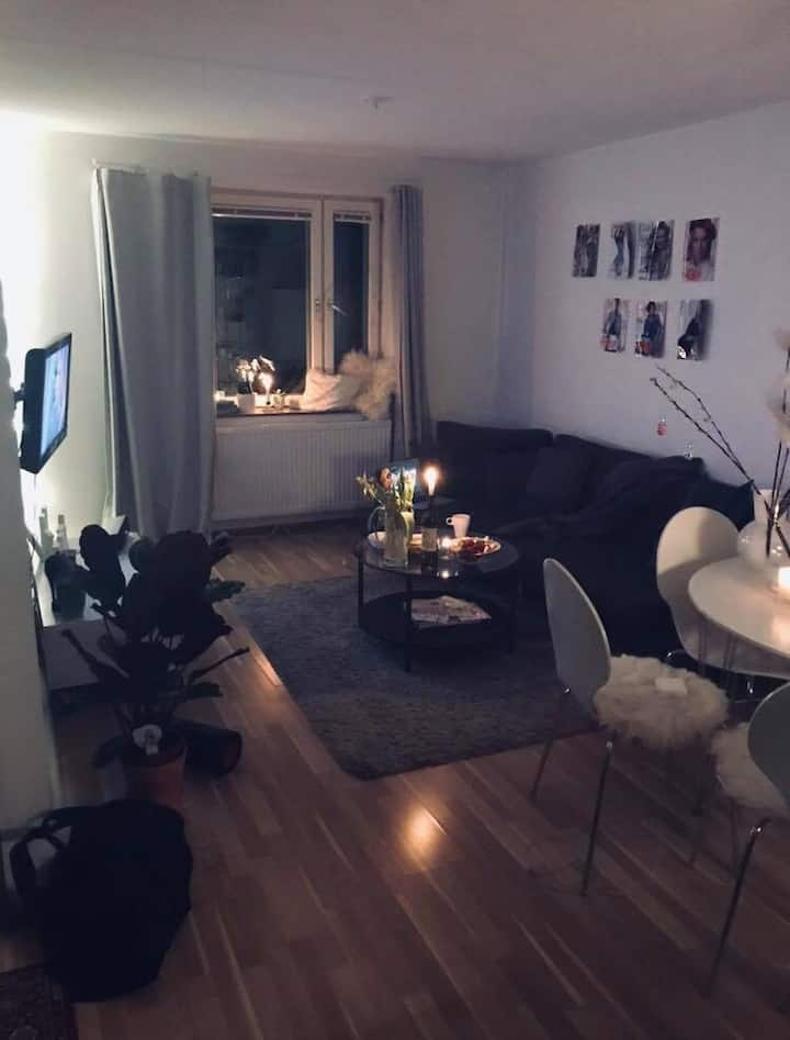 Cosy apartment close to central station