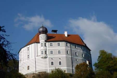 Castle Schönberg in Wenzenbach