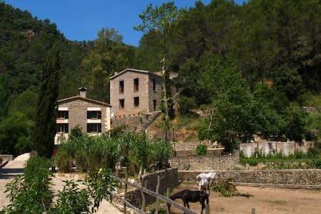 Casa en zona de montaña