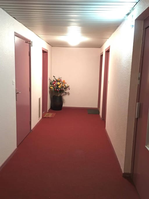 Chambre en plein centre 5 min jaude appartements - 5 chambres en ville clermont ferrand ...