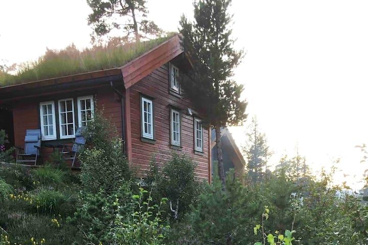 Guesthouse, betweenTrolltunga and Røldal Skisenter