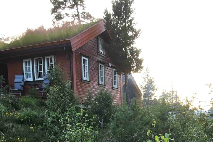 Guesthouse, betweenTrolltunga and Røldal Skisenter