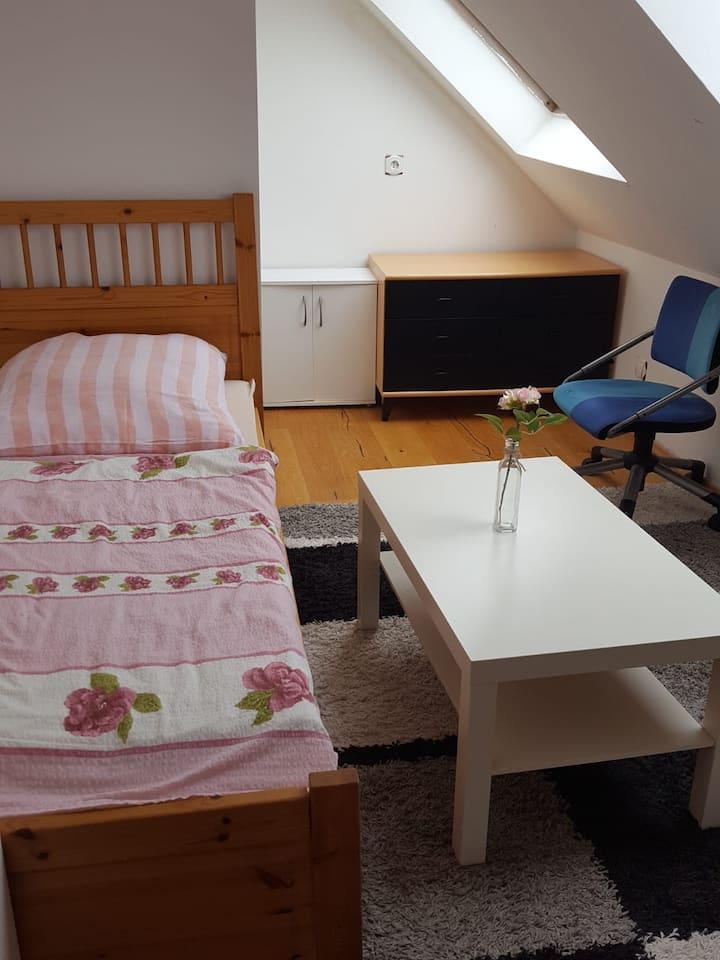 Apartzimmer mit Singleküche und Bad