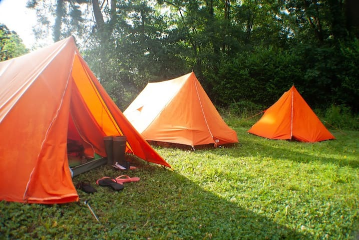 Exclusive Camping at Foxworthy