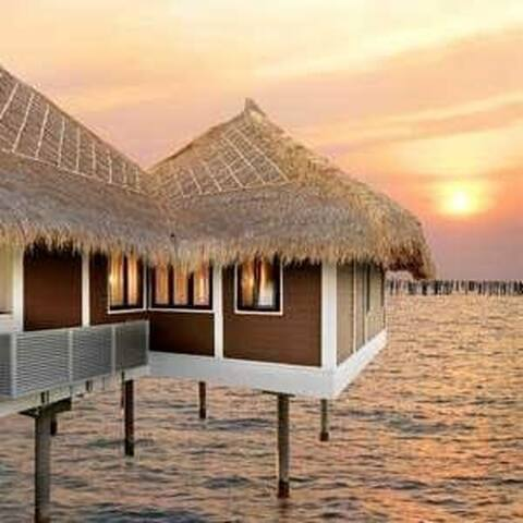 HONEYMOON ( AVANI SEPANG GOLDCOAST - 2ROOMS VILLA)