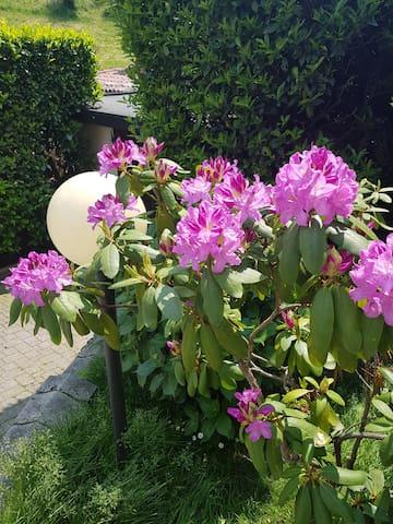 Casetta valfresca
