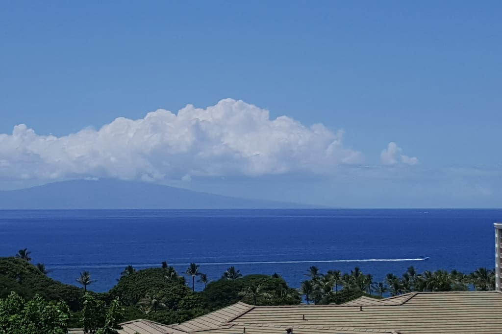 Wide spread view of the ocean