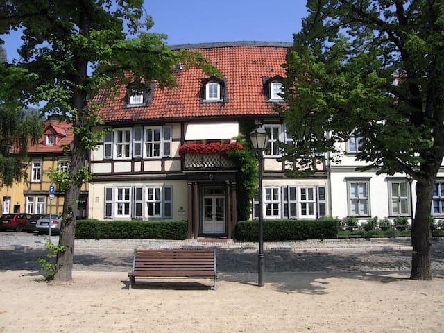 Großes Apartment im Domherrenhaus - Halberstadt - Huoneisto