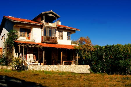 Rustic country villa in citrus and olive trees - Antalya - House - 0