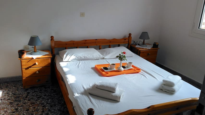 Hidden Treasure  kokkari apartments 50m from sea ! - Kokkari - Appartement