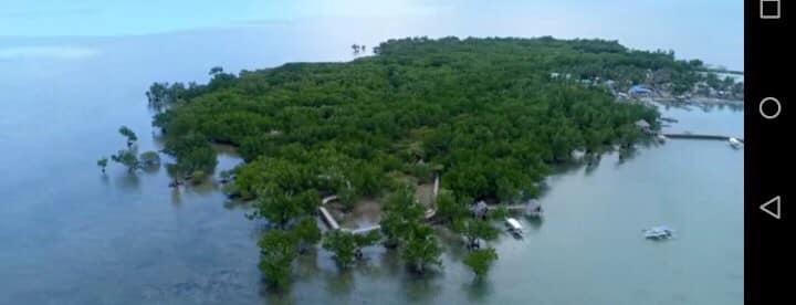 LBBA International Island