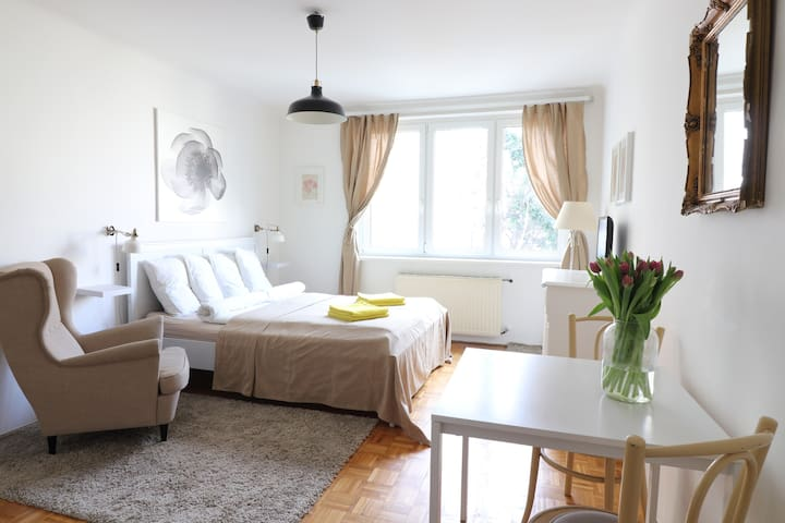 CHARMING APARTMENT IN PERFECT LOCATION! - Vienna - Apartamento
