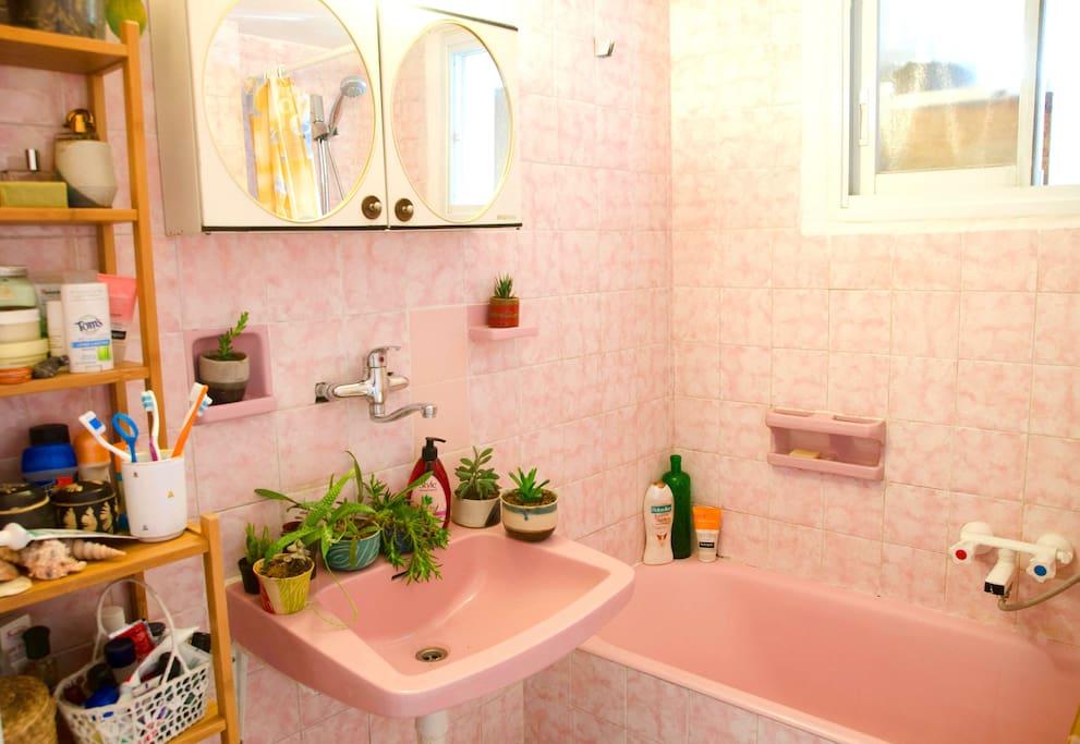 World's pinkest shower/tub