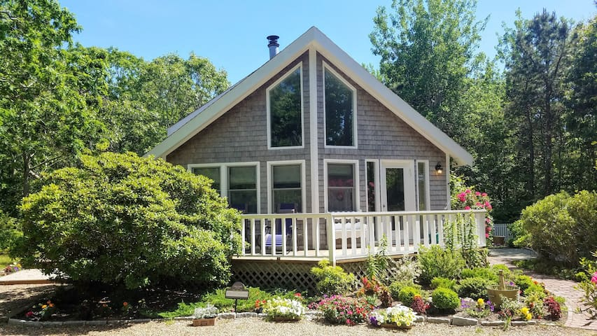 Magical and Pet Friendly in Edgartown