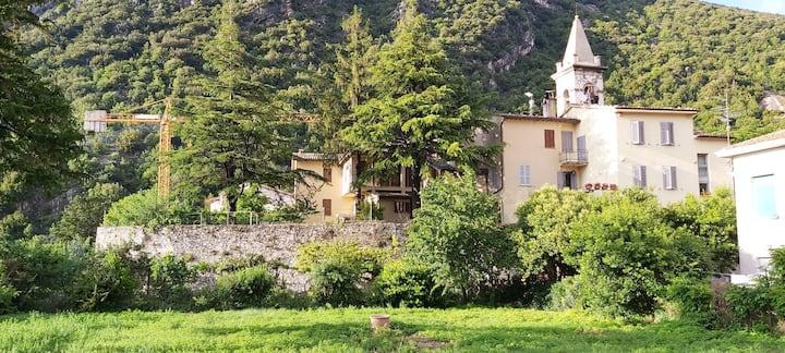 I Pini e il ciliegio vicino a Rasiglia